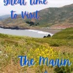 Spring at the Marin Headlands