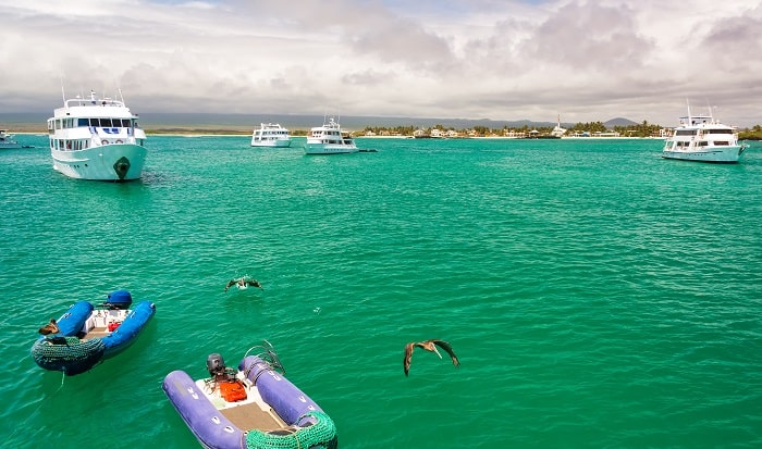 Galapagos Islands - a Once in a Lifetime Cruise