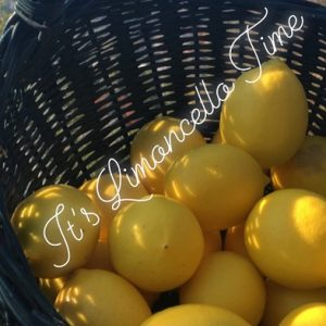Home Made Limoncello Recipe
