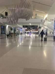 Travel During the Pandemic -Check in Area at SF Airport