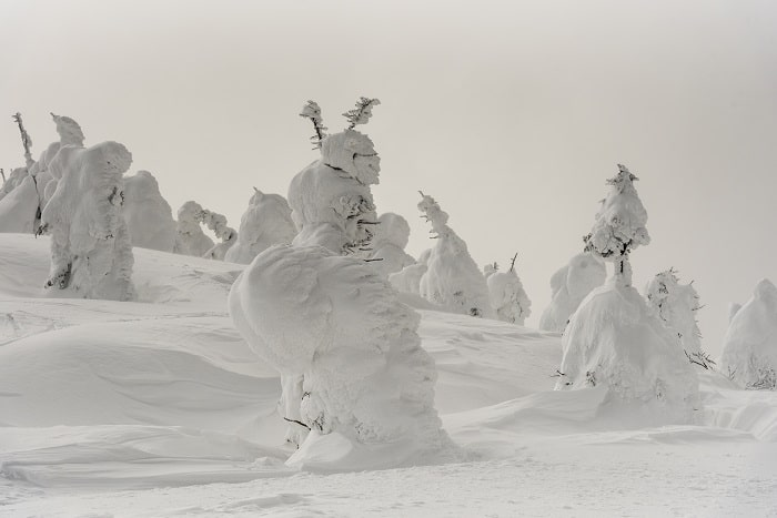 Places to Visit Before They Disappear - Snow Monsters at Zao mountain , Yamagata Japan