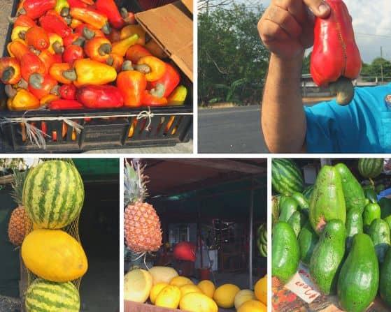 Fruits of Costa Rica - Panama Canal Cruise