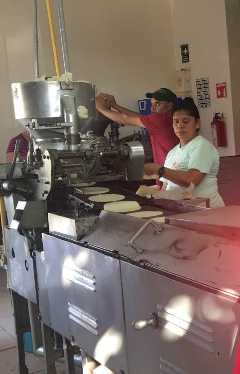 SJV-Tortillas Factory