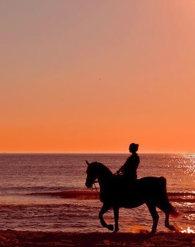 Travel Resolutions - Horseback Riding on the Beach