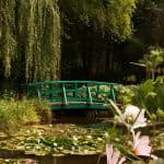 World-Famous Monet's Water Lilies