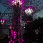 SuperTrees Singapore's Gardens By The Bay